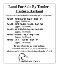 Land For Sale By Tender - Pasture/Hayland