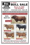 25th Annual Bull Sale