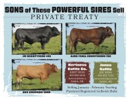 Sons of these powerful sires sell